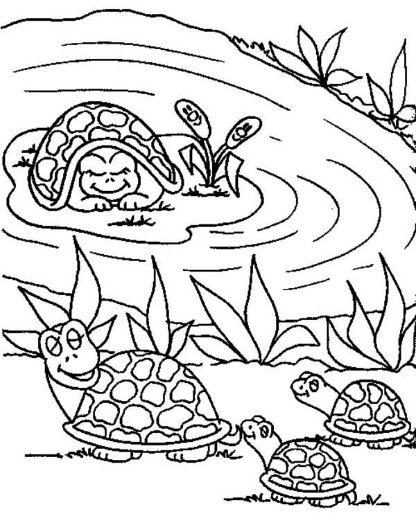 Frog pond coloring pages for Pond coloring pages